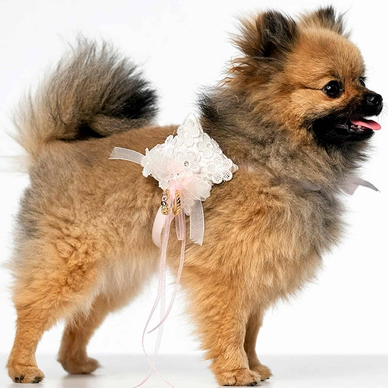 Ringkussentje voor honden POIPIP022-45LRvierk