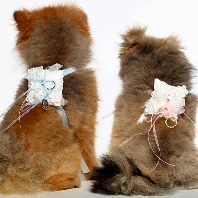 Ringkussentje voor honden POIPIP023-45LRvierk