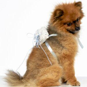 Ringkussentje voor Honden Trouwringen Lichtblauw